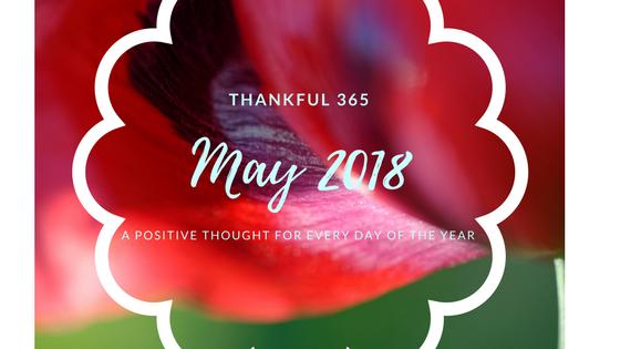 thankful 365